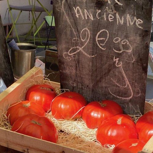 tomaten - 1