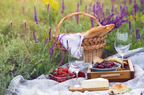 Depositphotos_194445478_xl-2015 Picnic in the meadow